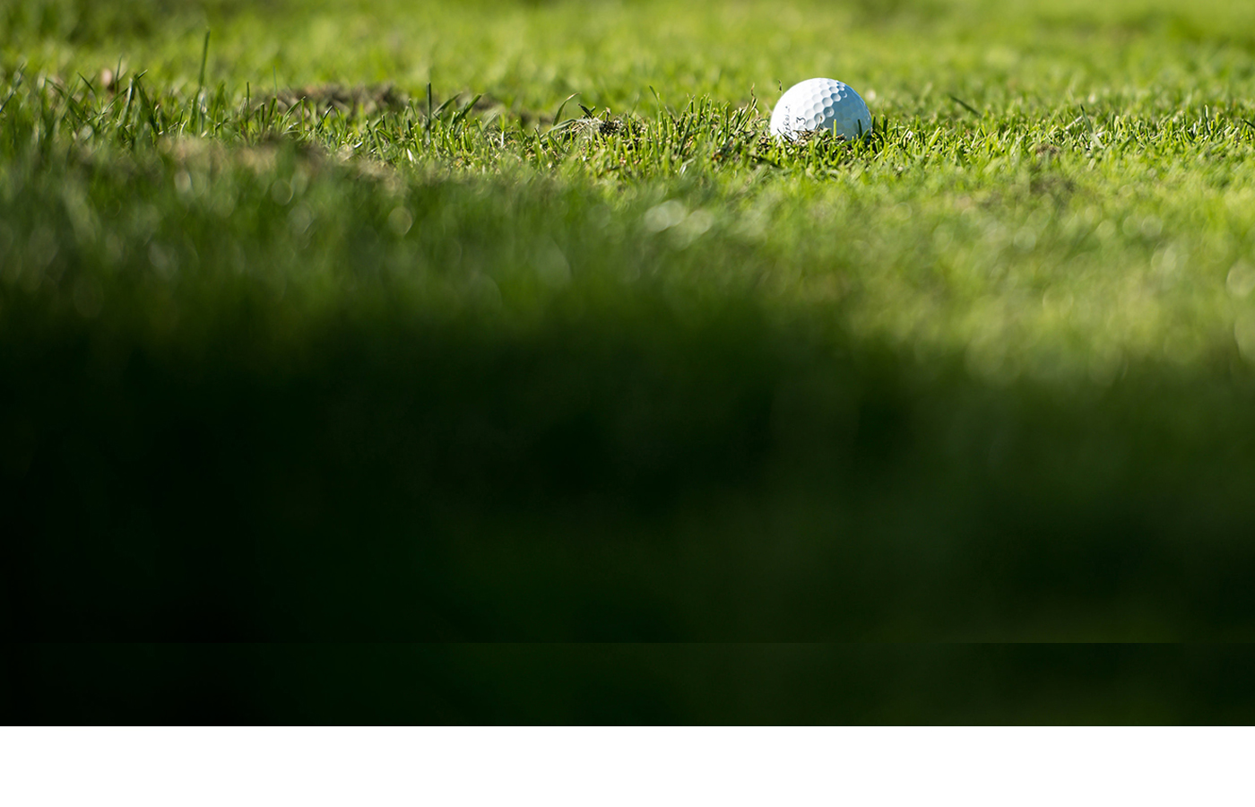 SMALL-CROPPED-Foundation-Stock-Golf-ParTee2