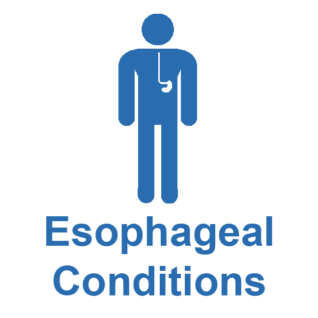 Esophageal_Conditions_New