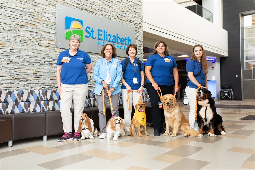 TherapyDogs2019-2